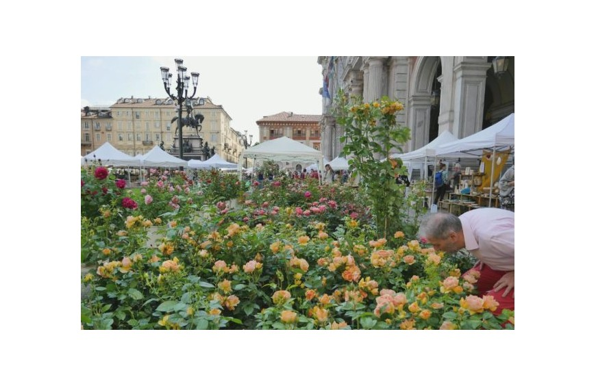 Agriflor Torino 2020 in piazza Vittorio